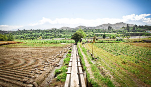 Cerro Verde-Canalizacion