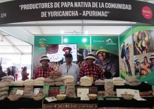 Stand de productores de papa nativa de Yuricancha en Mistura (Las Bambas).
