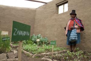 Invernadero donde se cultivan verduras que contribuyen a la alimentación de los beneficiarios (Minsur).